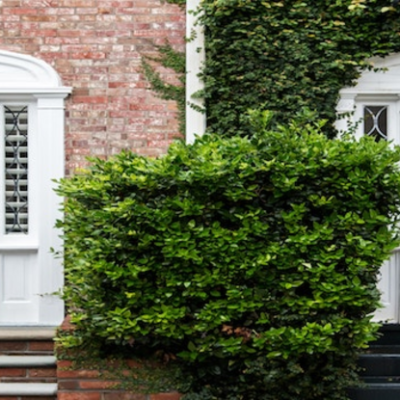Front doors of two homes
